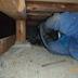 床下の防蟻・害虫駆除