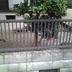 フェンスを新しいものに