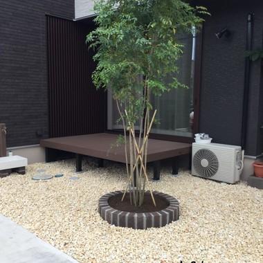庭の植栽後 植木正面から