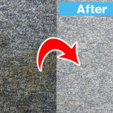 カーペット 清掃前清掃後比較写真