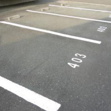 ライン引き後の駐車場