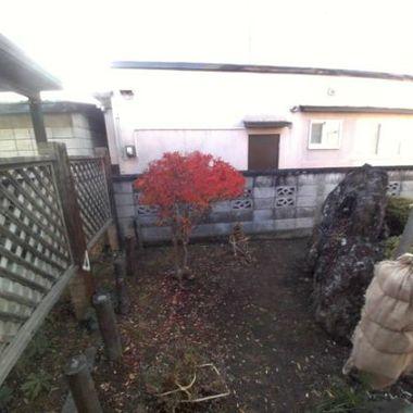 冬の庭支度 冬囲い