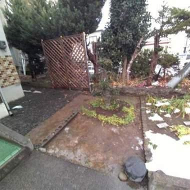 冬の庭支度 剪定