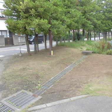 草刈り後の敷地