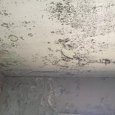 北区 お風呂のリフォーム 壁面修理前4 天井