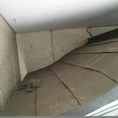 身守地蔵尊のお掃除前 屋根