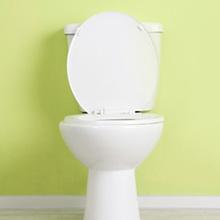 トイレの基礎知識
