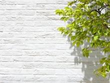 大切なマイホームの外壁を劣化から守る!防水シートの必要性