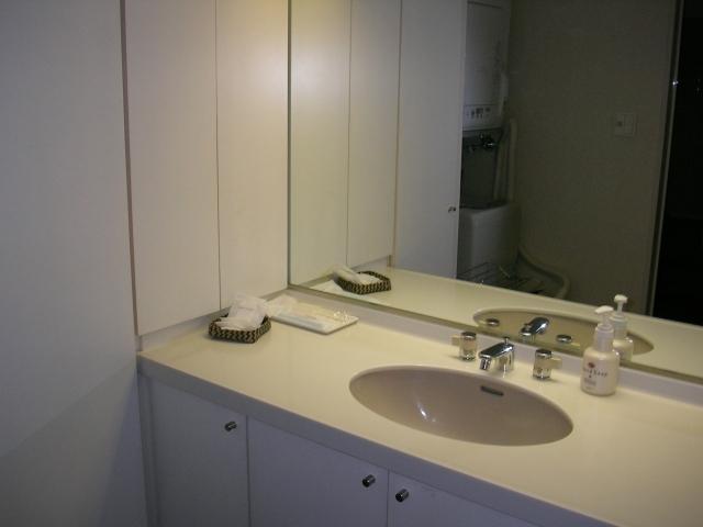 洗面所 水漏れ・つまり | 洗面台のつまりの原因と解消する方法を徹底解説